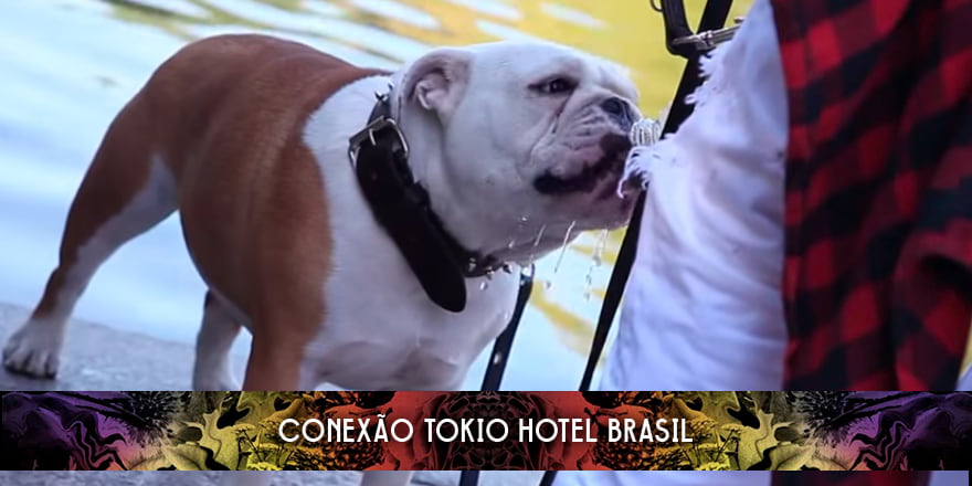 novo piercing de bill kaulitz no Tokio Hotel TV